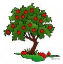 Tree b.jpg
